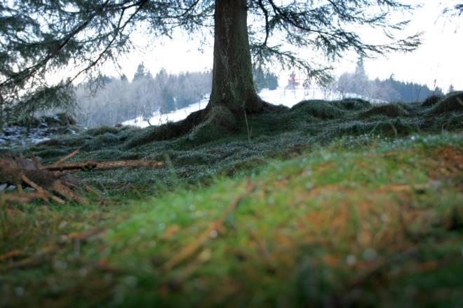 Snowmania 2007 w Małym Cichym